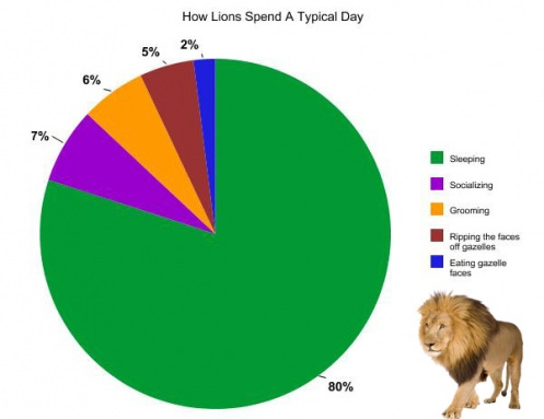 The Typical Lives of Animals Told in Pie Charts ...