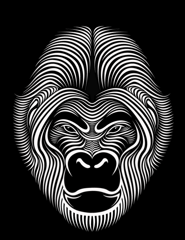 Line Art Face : Hypnotic line art faces by patrick seymour