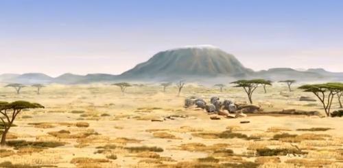 rollin_safari