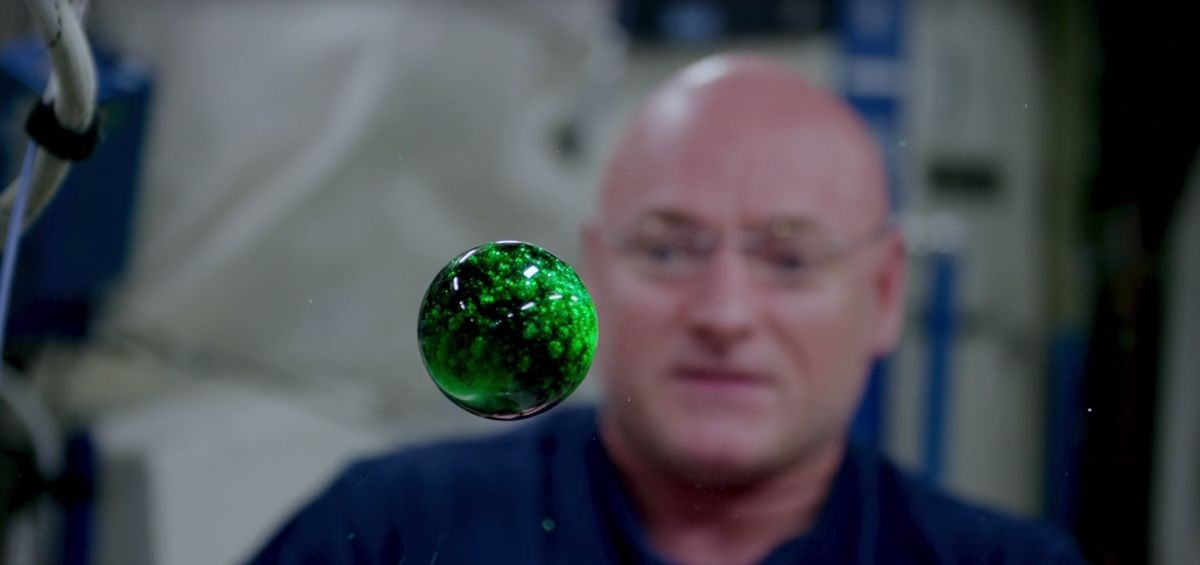 water_bubble_space_NASA