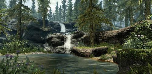 Skyrim Environment