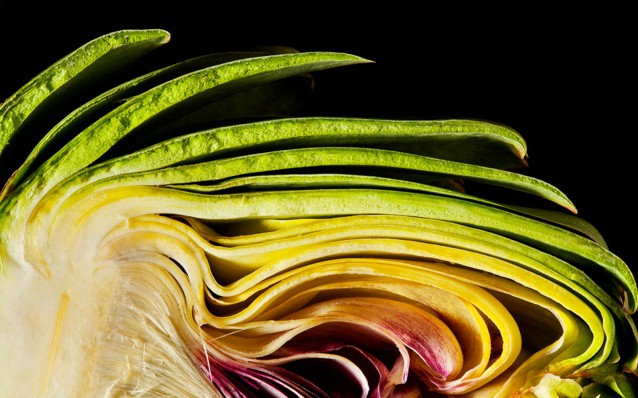 photography_of_modernist_cuisine_artichoke