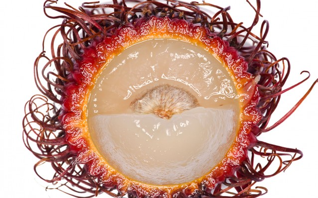 photography_of_modernist_cuisine_rambutan