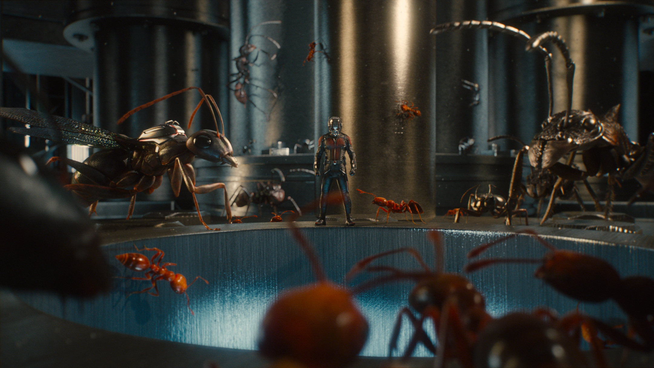 Marvel's Ant-Man..Ant-Man/Scott Lang (Paul Rudd) and his ants...Photo Credit: Film Frame..? Marvel 2015