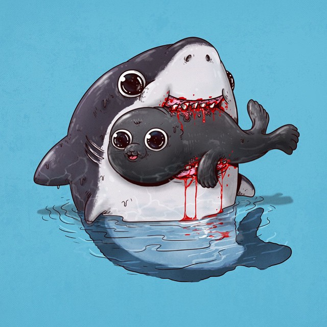 Shark & Seal